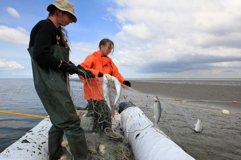 Jan en Barbara staand want foto Robert Posthumus 1000px web Animo voor vak traditionele kustvisser flink toegenomen